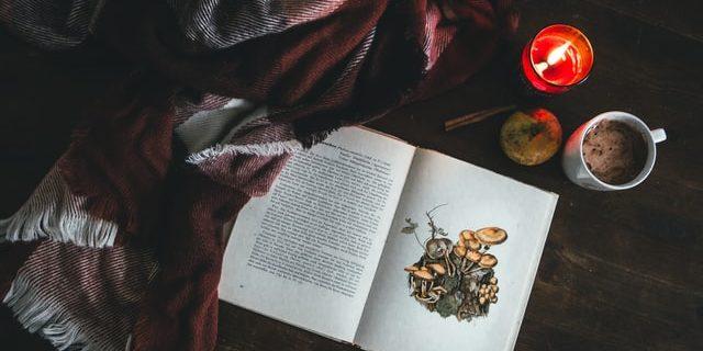 Book and Blanket: December 2020